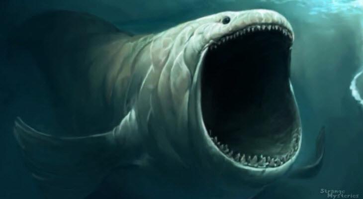 6-02-21-biggest-sea-creature-400-3